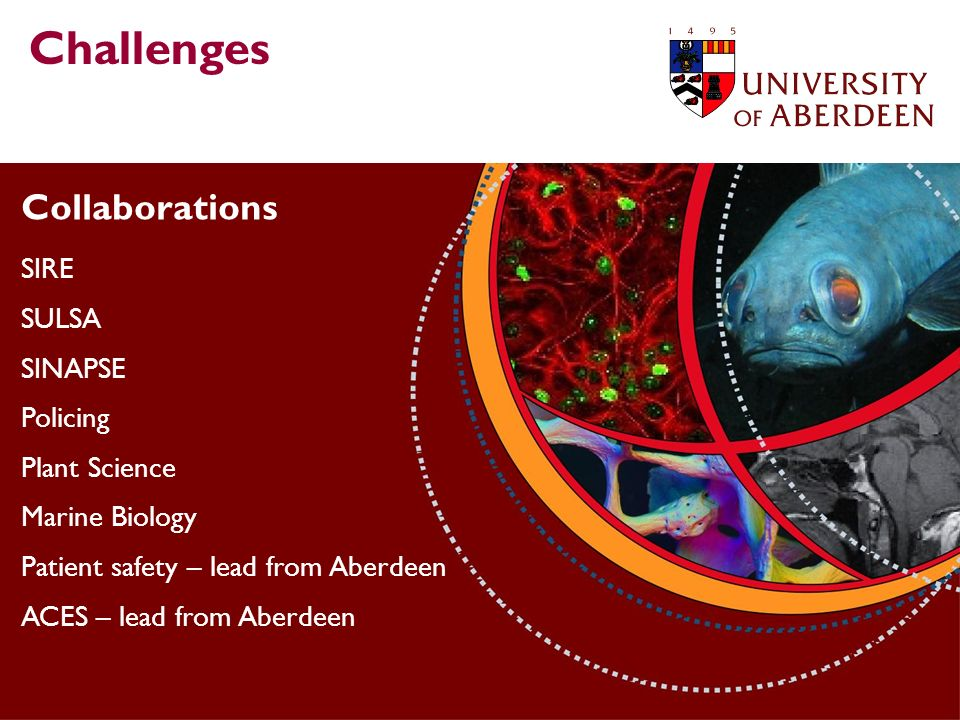 Collaborations SIRE SULSA SINAPSE Policing Plant Science Marine Biology Patient safety – lead from Aberdeen ACES – lead from Aberdeen Challenges