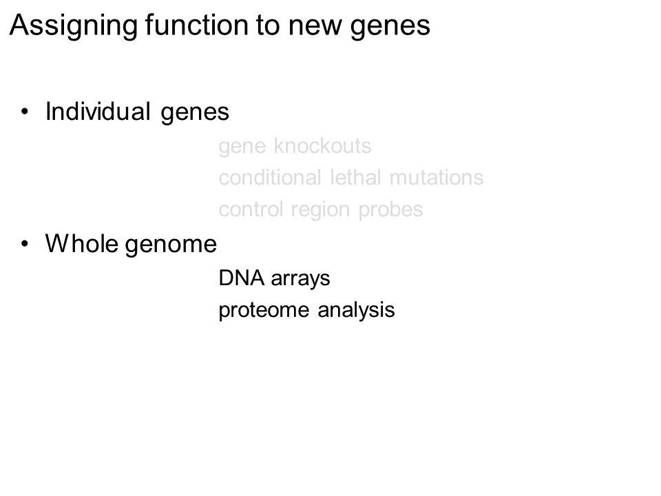 Assigning function to new genes Individual genes gene knockouts conditional lethal mutations control region probes Whole genome DNA arrays proteome analysis