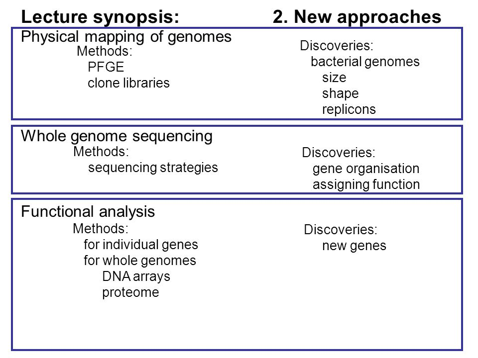 Genome organisation Can identify –all protein and RNA coding genes –organisation of genes in genome wrt each other