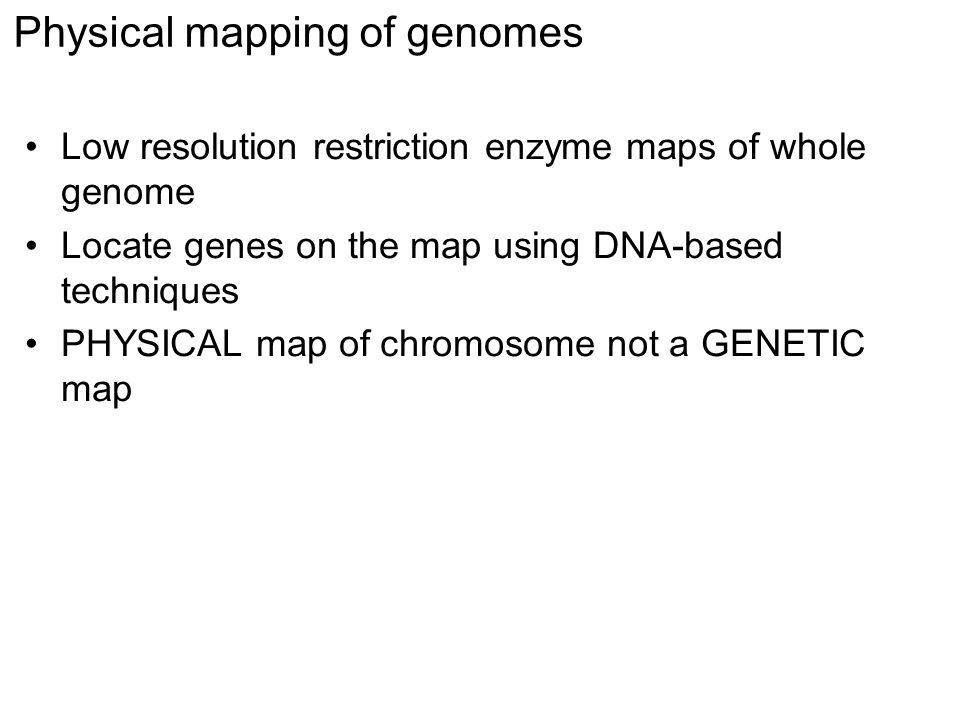 Bacterial genomes come in different conformations Circular chromosomes –the traditional view: E.