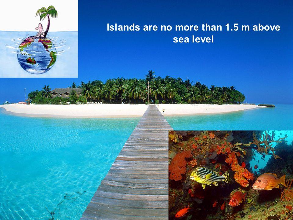 Gan, Laamu Atoll: Maldives tsunami sediment thickness 30cm Finer sediment than the beach