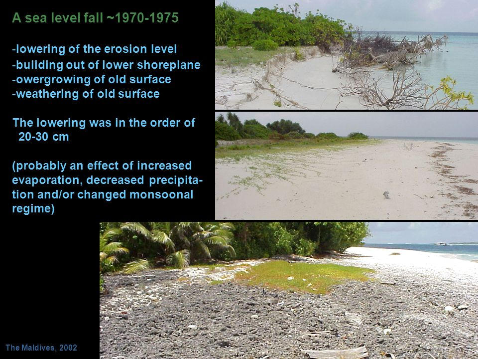 A sea level fall ~1970-1975 -lowering of the erosion level -building out of lower shoreplane -owergrowing of old surface -weathering of old surface Th