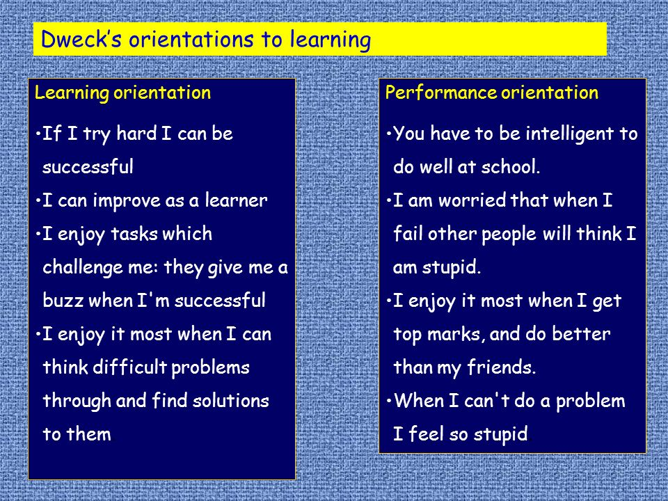 Learning orientation If I try hard I can be successful I can improve as a learner I enjoy tasks which challenge me: they give me a buzz when I m successful I enjoy it most when I can think difficult problems through and find solutions to them.