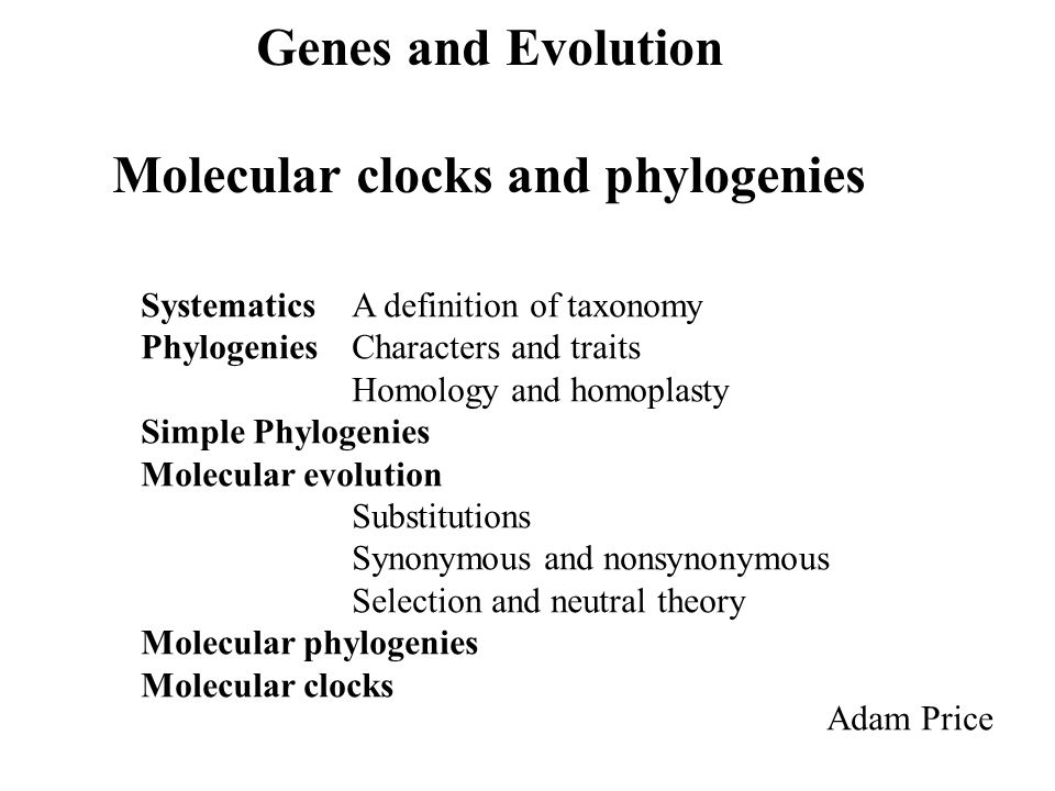 Genes and Evolution Molecular clocks and phylogenies Adam Price Systematics A definition of taxonomy PhylogeniesCharacters and traits Homology and homoplasty Simple Phylogenies Molecular evolution Substitutions Synonymous and nonsynonymous Selection and neutral theory Molecular phylogenies Molecular clocks