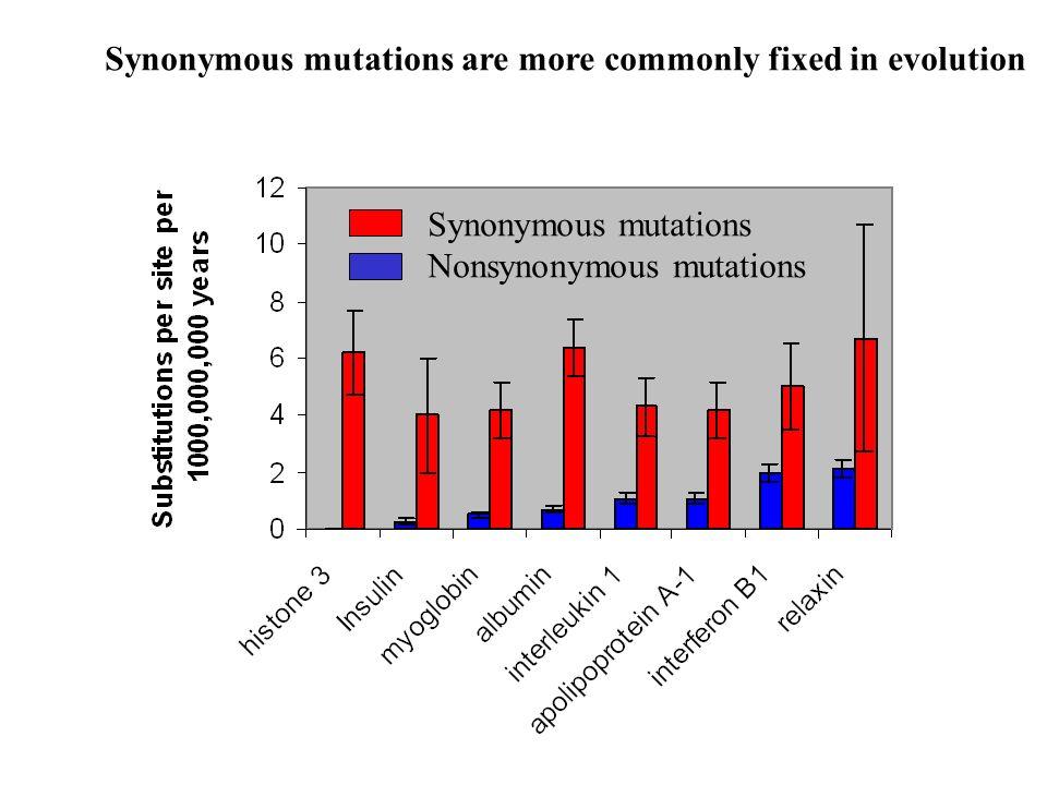 Synonymous mutations Nonsynonymous mutations Synonymous mutations are more commonly fixed in evolution