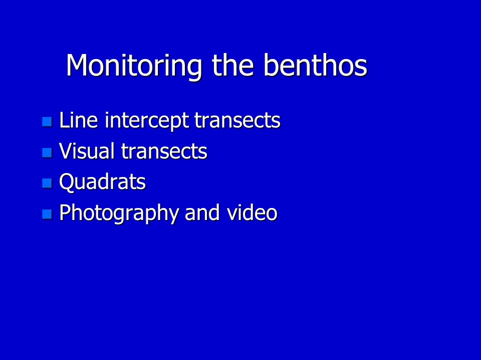 Monitoring the benthos n Line intercept transects n Visual transects n Quadrats n Photography and video