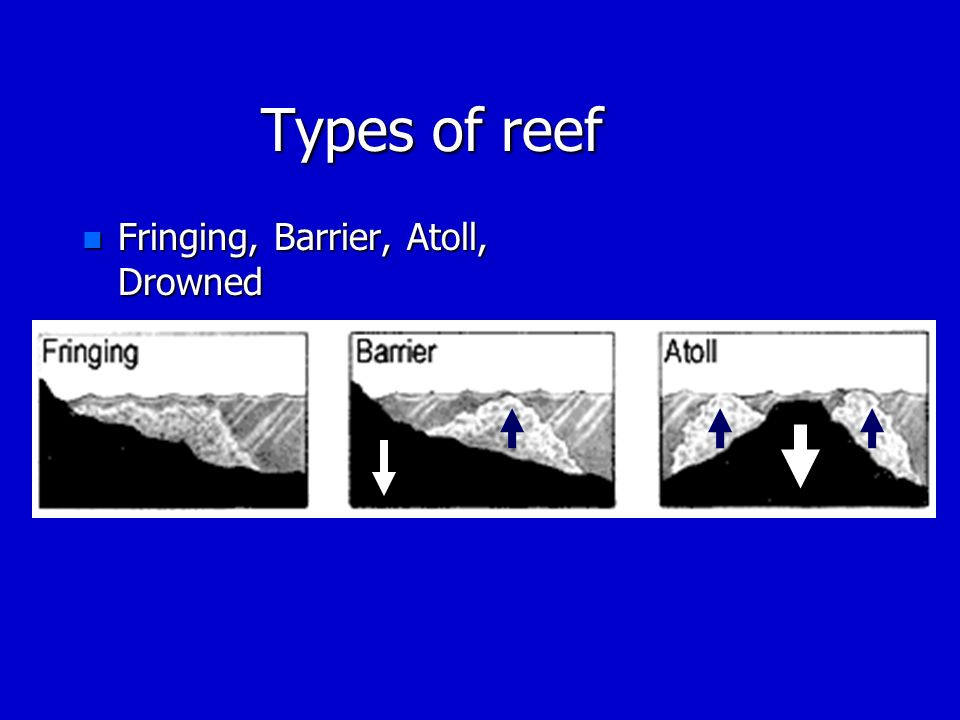 Types of reef n Fringing, Barrier, Atoll, Drowned
