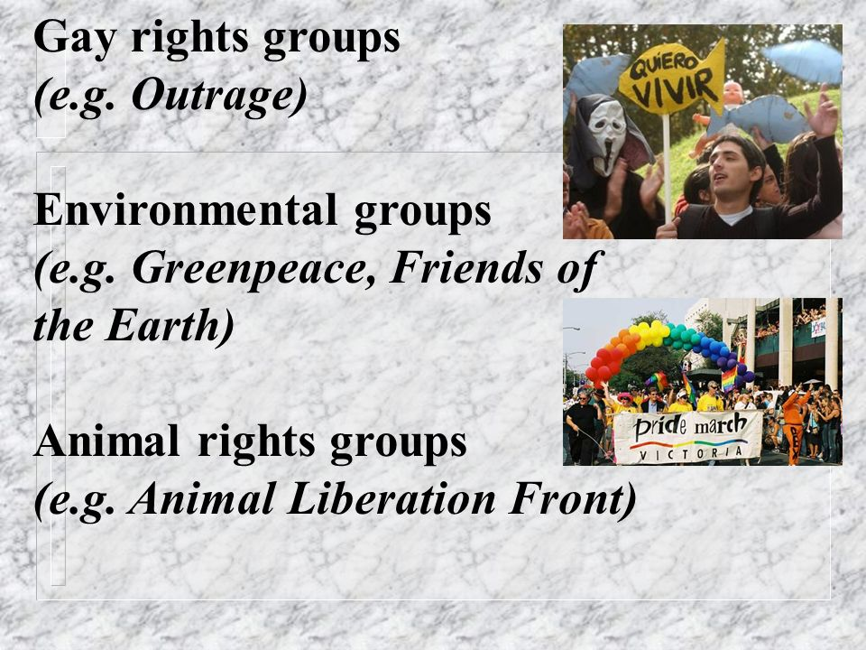 Gay rights groups (e.g. Outrage) Environmental groups (e.g.