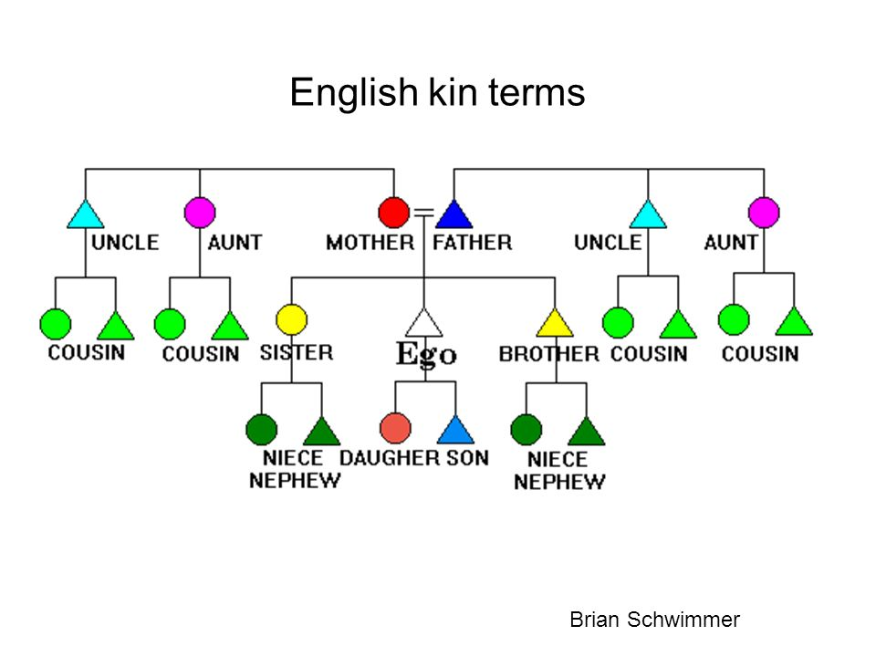 Doctrine of the Genealogical Unity of Humanity Biological kinship is usually distinguished sharply from social kinship Social kinship was about social facts (following Durkheim), but biology was relegated to the background, an assumption.