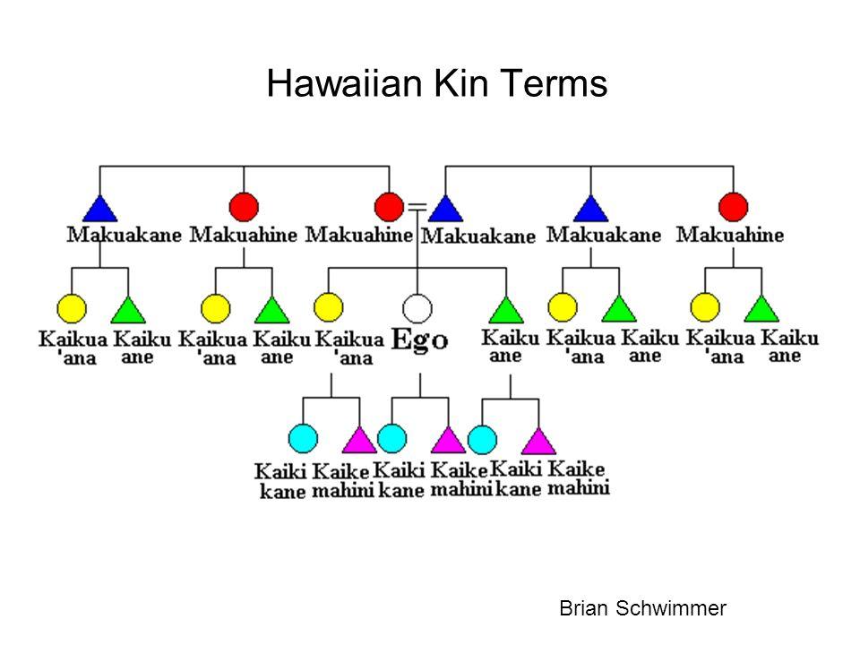Hawaiian Kin Terms Brian Schwimmer