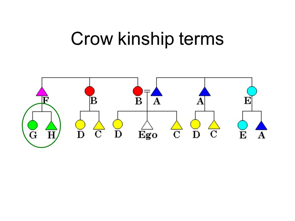 Crow kinship terms