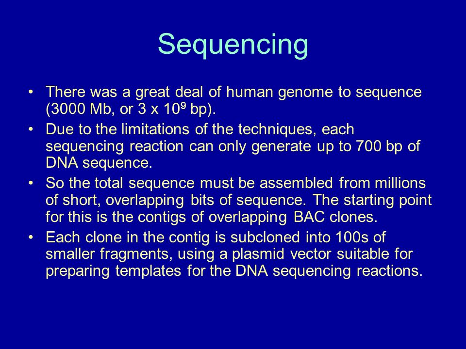 Sequencing There was a great deal of human genome to sequence (3000 Mb, or 3 x 10 9 bp).