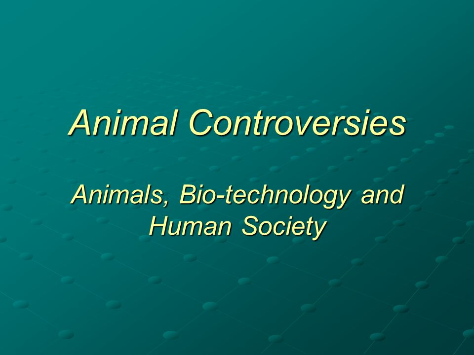 Deontological ethics: focuses on the intrinsic rightness or wrongness of the bio-technology, including: - the idea that it is blasphemous (playing God with nature) - the idea that it is unnatural (breaches species boundaries) - the idea that it is disrespectful (violates the right of the organism to express its own nature) Consequentialist ethics: focuses on the possible consequences of the bio-technology, including: - the consequences of the technology for animal welfare - the possible risks to human health - the risks to the environment and genetic diversity