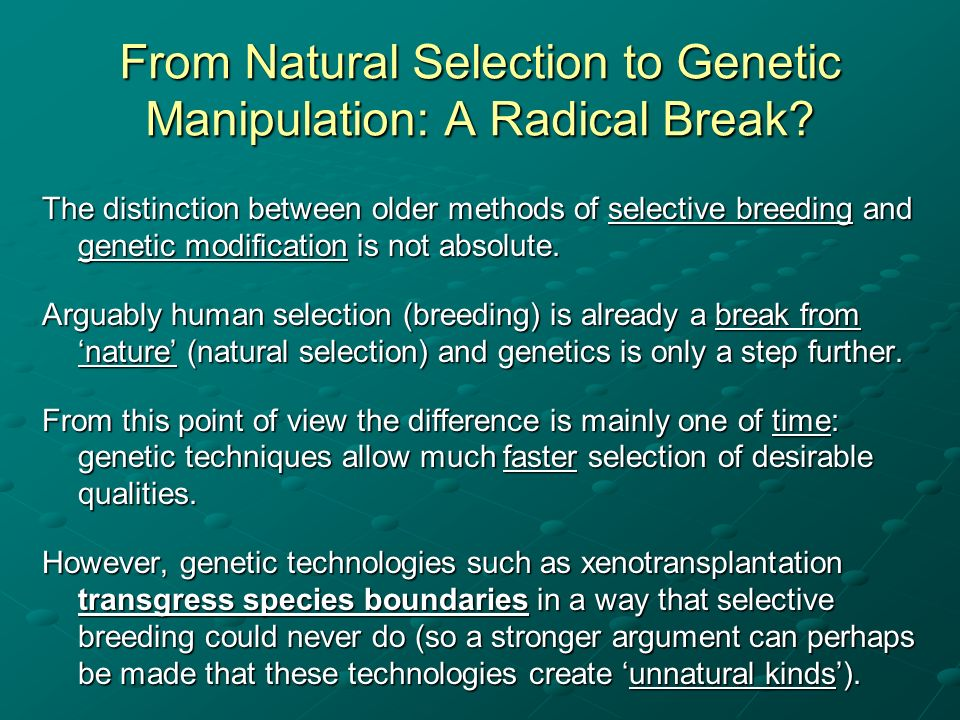 From Natural Selection to Genetic Manipulation: A Radical Break? The distinction between older methods of selective breeding and genetic modification