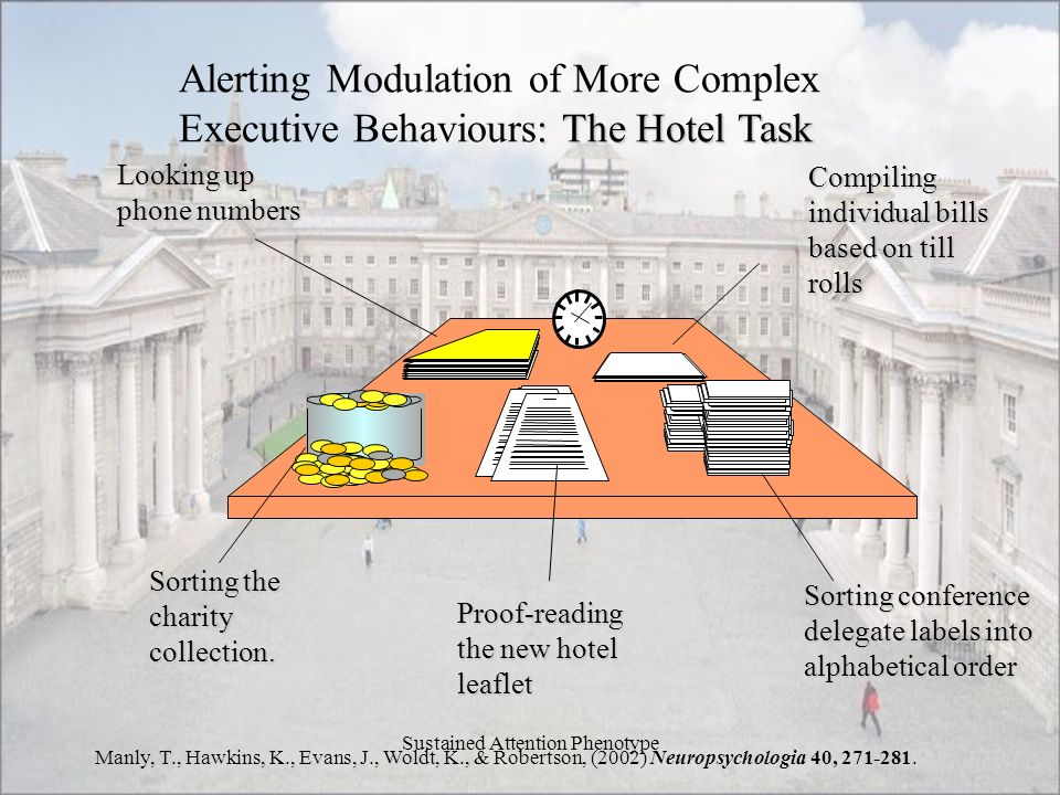 Sustained Attention Phenotype Alerting Modulation of More Complex : The Hotel Task Executive Behaviours: The Hotel Task Sorting the charity collection