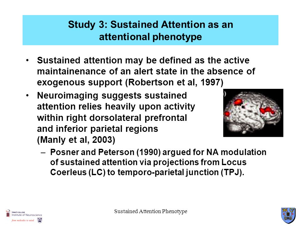 Sustained Attention Phenotype Study 3: Sustained Attention as an attentional phenotype Sustained attention may be defined as the active maintainenance