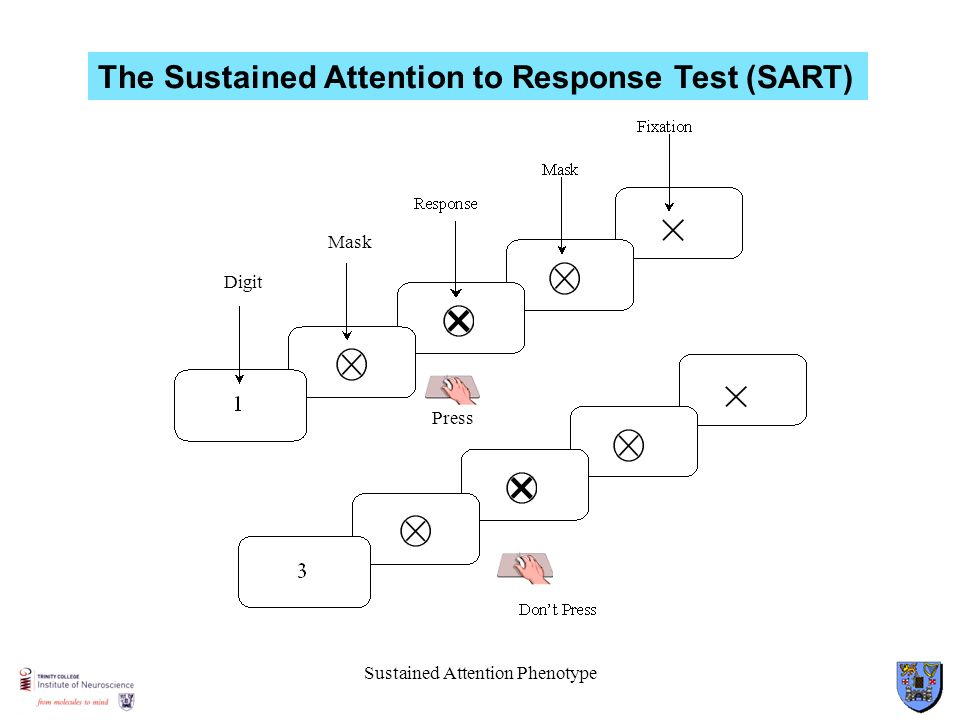 Sustained Attention Phenotype Mask Digit Press The Sustained Attention to Response Test (SART)
