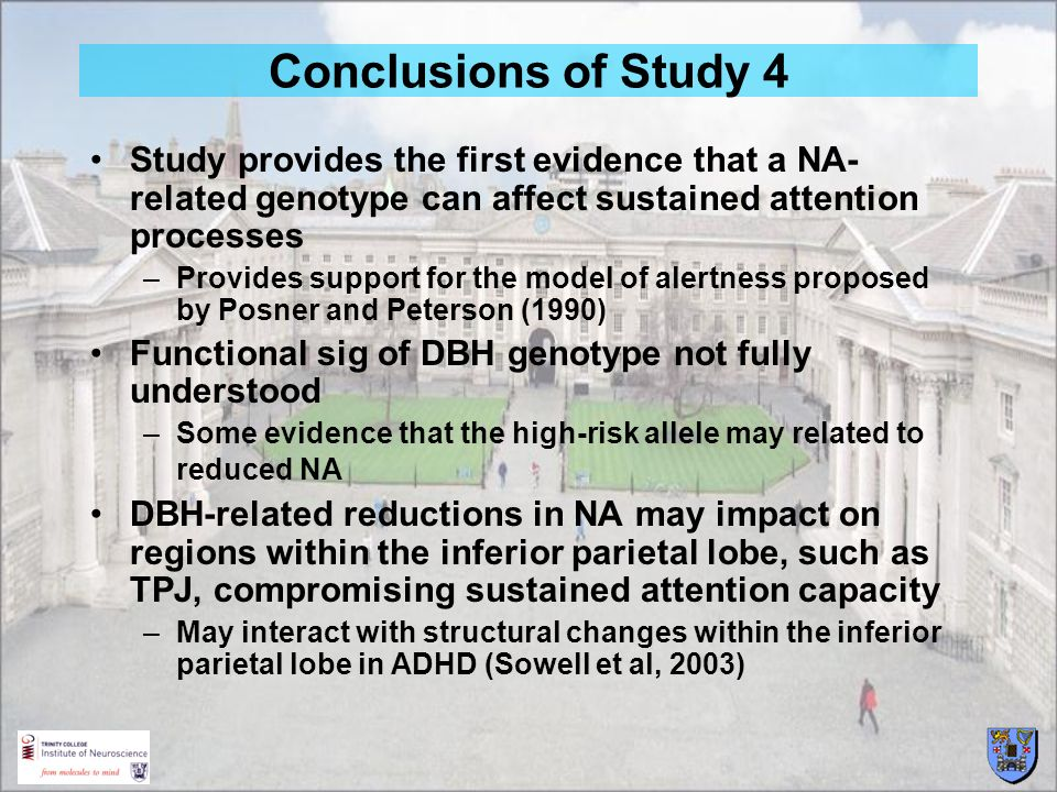Conclusions of Study 4 Study provides the first evidence that a NA- related genotype can affect sustained attention processes –Provides support for th