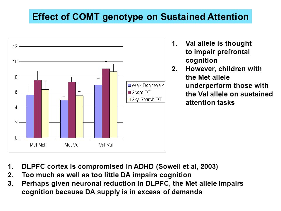 Effect of COMT genotype on Sustained Attention 1.Val allele is thought to impair prefrontal cognition 2.However, children with the Met allele underper