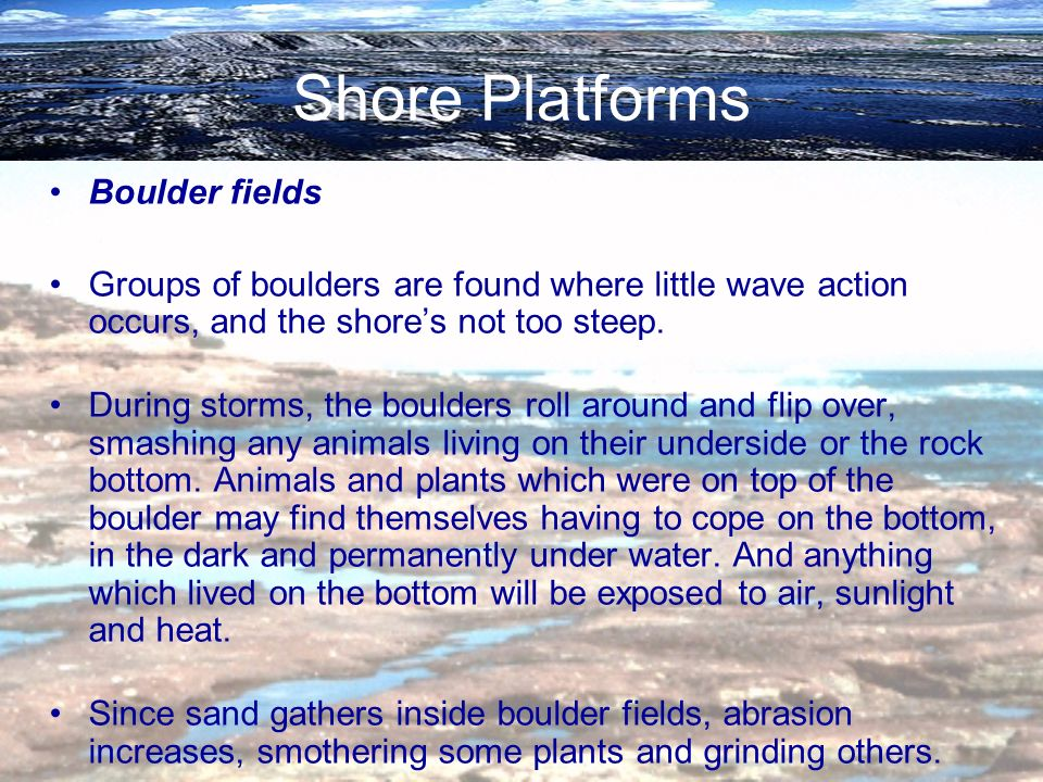 Shore Platforms Boulder fields Groups of boulders are found where little wave action occurs, and the shores not too steep. During storms, the boulders