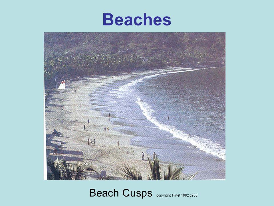 Beach Cusps copyright Pinet 1992 p266