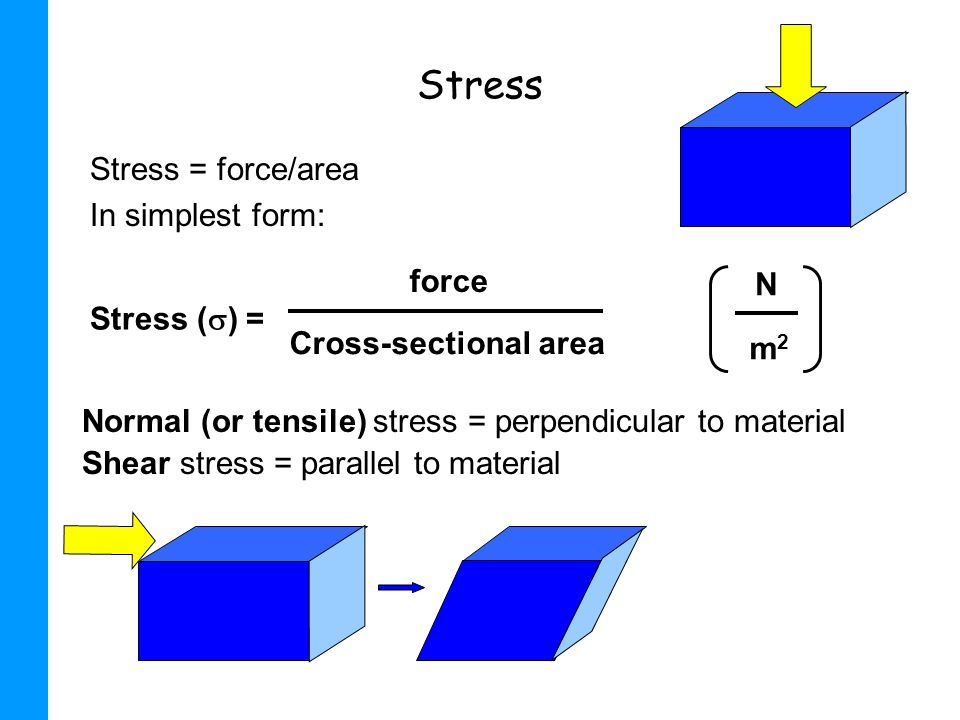 Stress Stress = force/area In simplest form: Normal (or tensile) stress = perpendicular to material Shear stress = parallel to material Stress ( ) = f