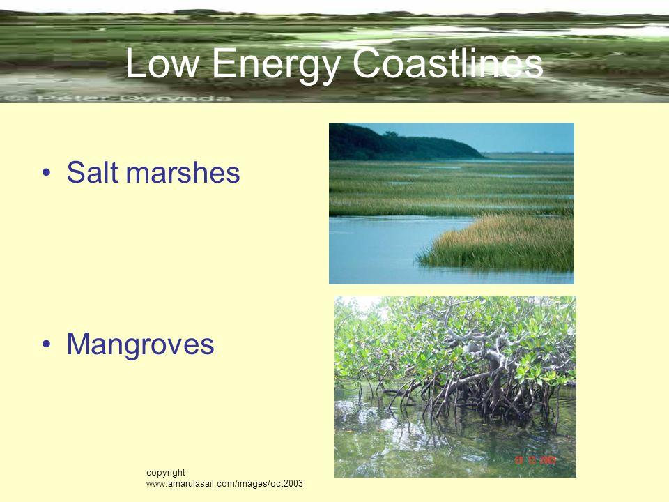 Low Energy Coastlines Salt marshes Mangroves copyright www.amarulasail.com/images/oct2003