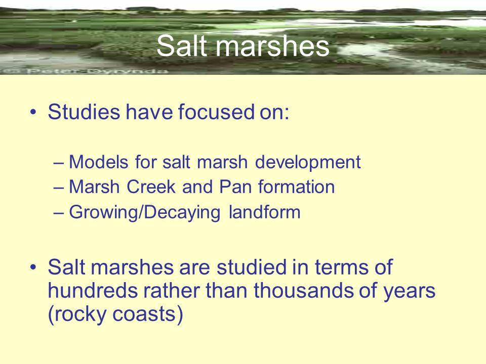 Salt marshes Studies have focused on: –Models for salt marsh development –Marsh Creek and Pan formation –Growing/Decaying landform Salt marshes are st