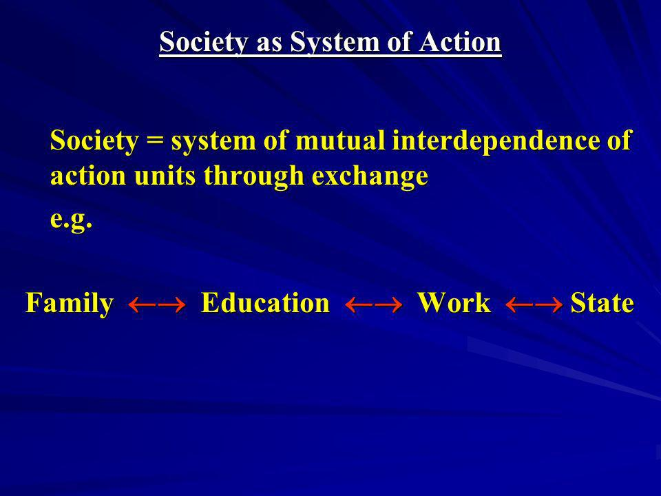 FUNCTION The function of an action unit is whatever it contributes to the maintenance of the overall system of action.
