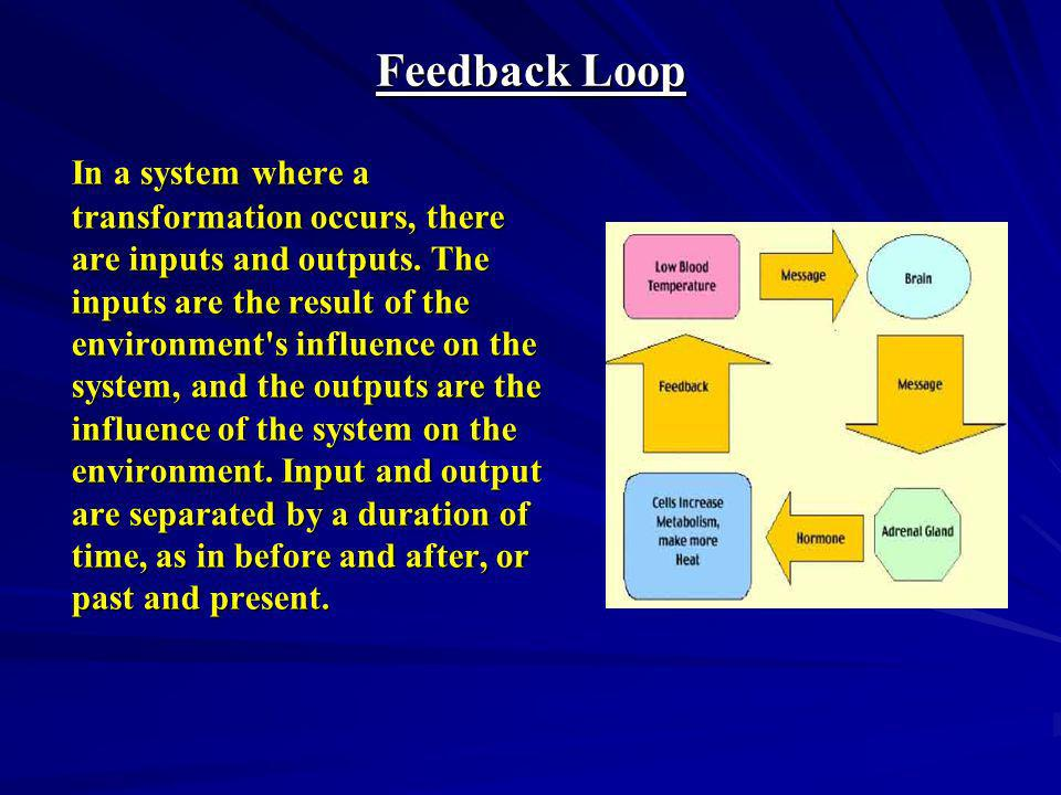 In every feedback loop, as the name suggests, information about the result of a transformation or an action is sent back to the input of the system in the form of input data.
