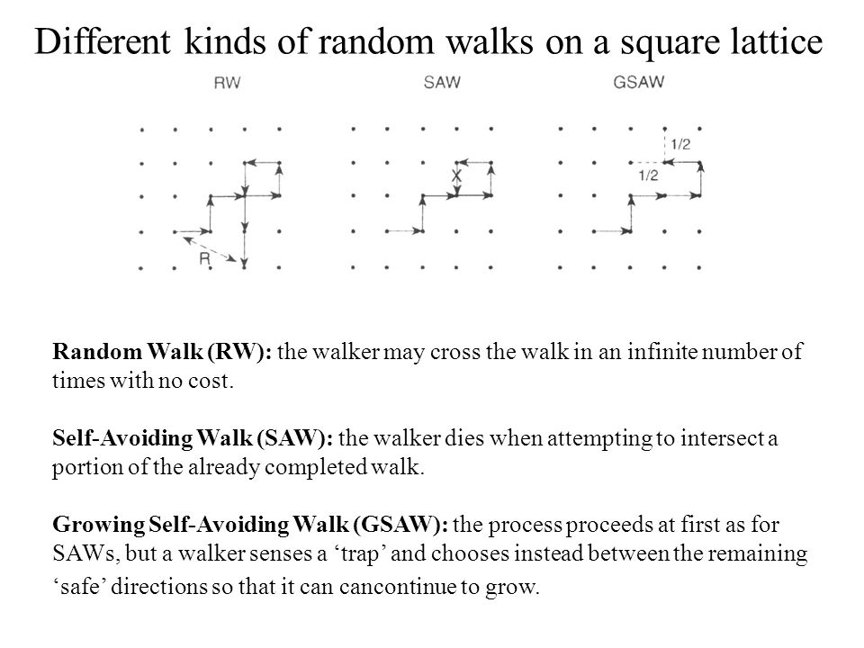 Different kinds of random walks on a square lattice Random Walk (RW): the walker may cross the walk in an infinite number of times with no cost.