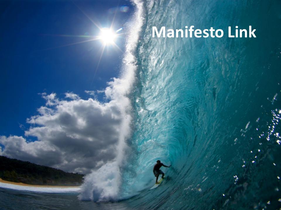 Manifesto Link