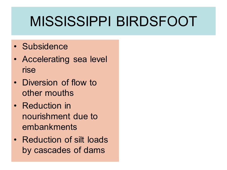 Subsidence Accelerating sea level rise Diversion of flow to other mouths Reduction in nourishment due to embankments Reduction of silt loads by cascades of dams