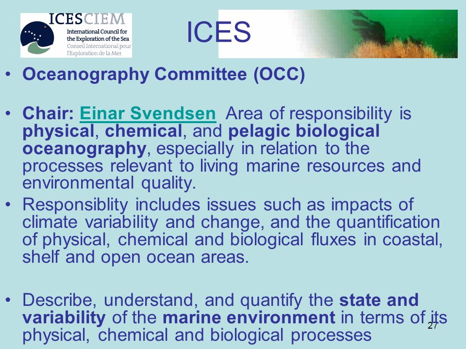27 Oceanography Committee (OCC) Chair: Einar Svendsen Area of responsibility is physical, chemical, and pelagic biological oceanography, especially in