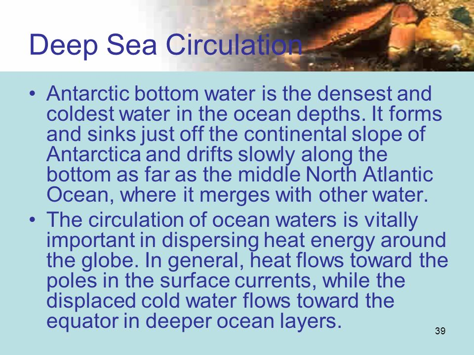 39 Antarctic bottom water is the densest and coldest water in the ocean depths. It forms and sinks just off the continental slope of Antarctica and dr