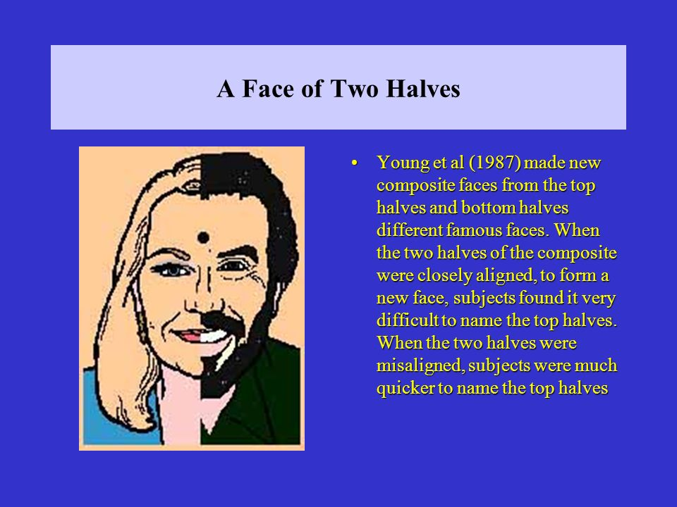 A Face of Two Halves Young et al (1987) made new composite faces from the top halves and bottom halves different famous faces.