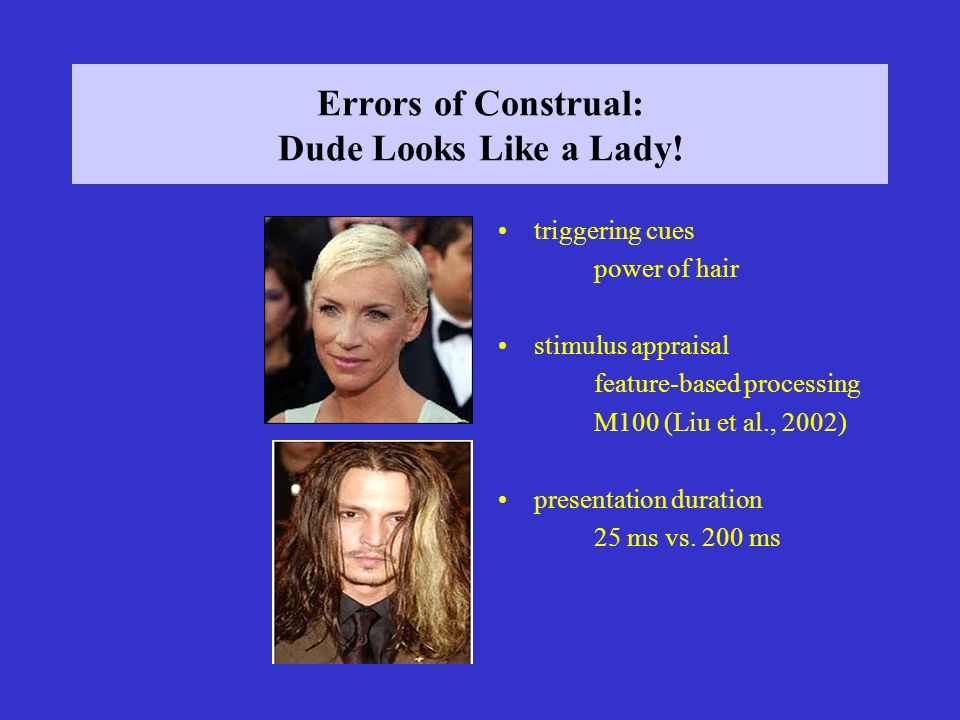 Errors of Construal: Dude Looks Like a Lady.