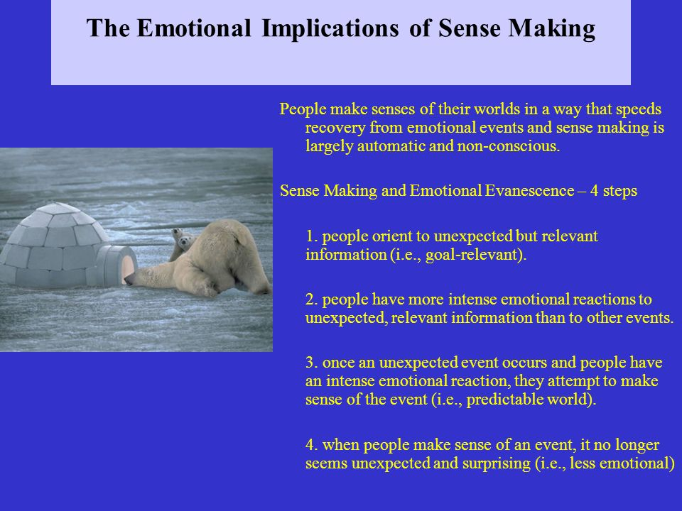 The Emotional Implications of Sense Making People make senses of their worlds in a way that speeds recovery from emotional events and sense making is largely automatic and non-conscious.