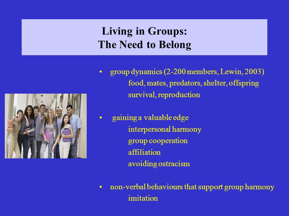 Living in Groups: The Need to Belong group dynamics (2-200 members, Lewin, 2003) food, mates, predators, shelter, offspring survival, reproduction gai