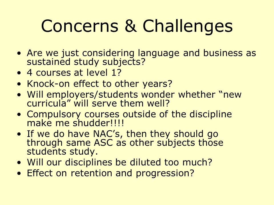 Concerns & Challenges Are we just considering language and business as sustained study subjects.