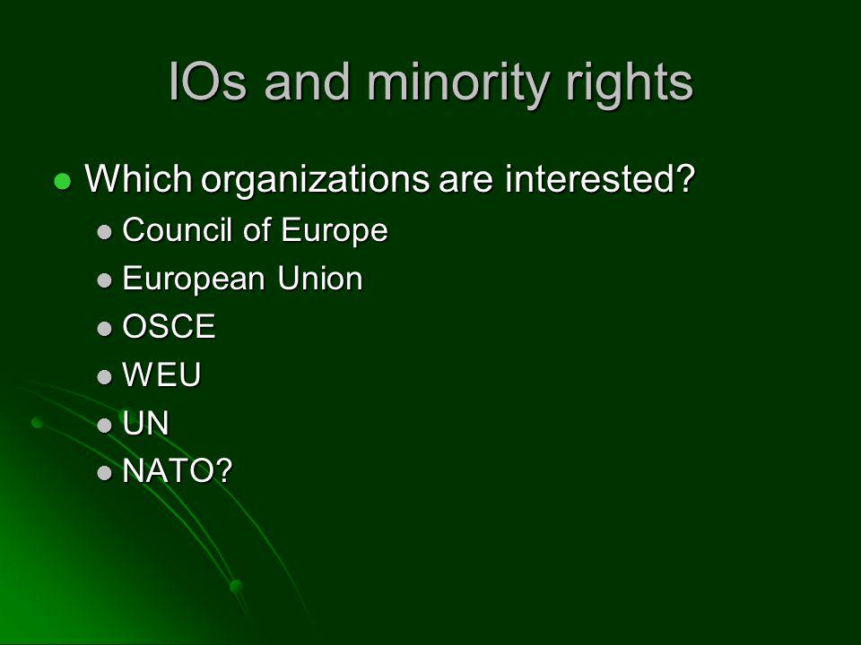 IOs and minority rights Which organizations are interested.