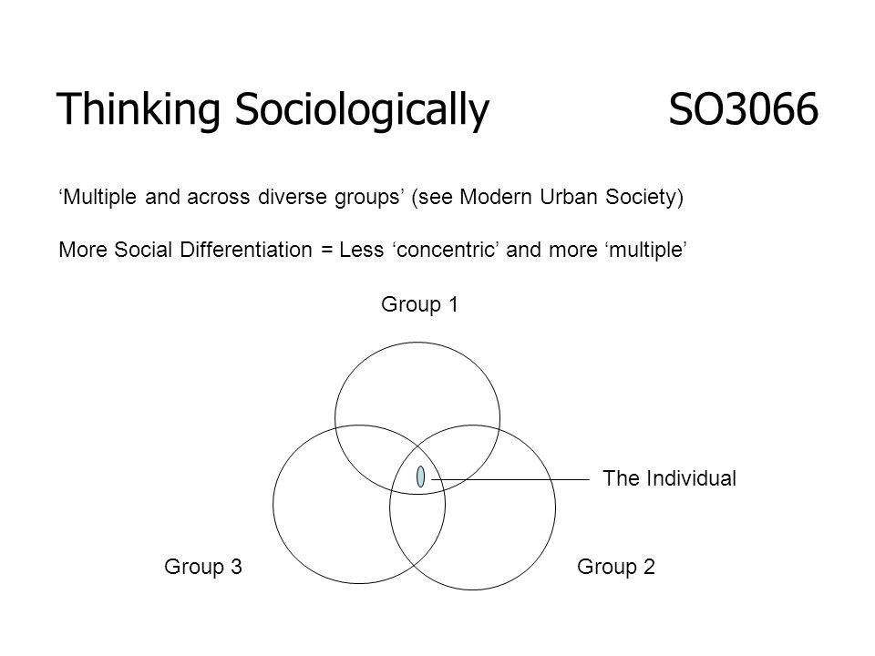 Thinking Sociologically SO3066 Group 1 Group 2Group 3 The Individual Multiple and across diverse groups (see Modern Urban Society) More Social Differe
