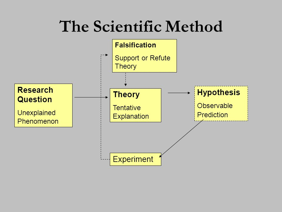 Other Characteristics of the Scientific Method: Falsification –Karl Popper (1959) The Logic of Scientific Discovery –Either reject or support hypothesis, but never prove it –Not falsifiable = philosophical question Verifiability (Replication) –Repeatable (hopefully with same results) peer reviewed Science is Dynamic –Scientific laws = Theory and facts match over numerous experiments –But laws can be overturned with new evidence knowledge changes