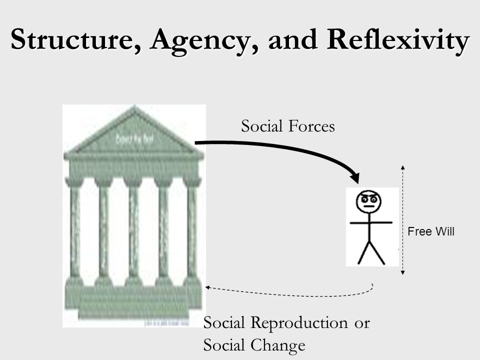 Structure, Agency, and Reflexivity Social Forces Social Reproduction or Social Change Free Will