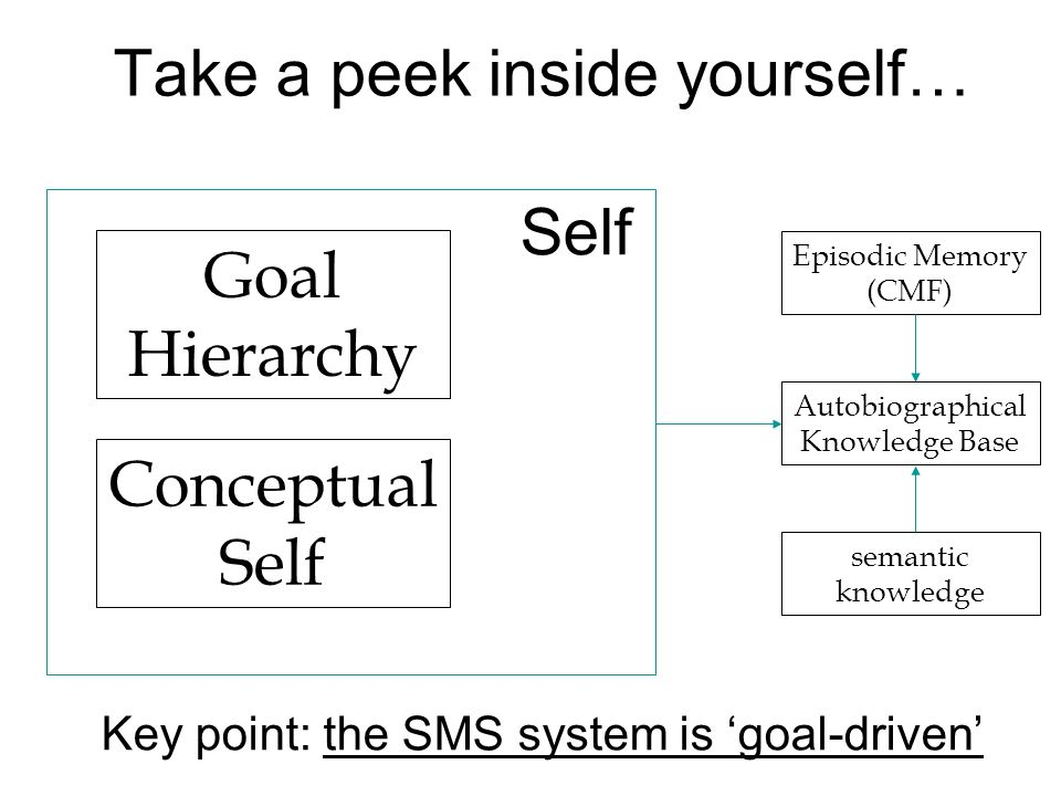 Goal Hierarchy Take a peek inside yourself… Conceptual Self Self Autobiographical Knowledge Base semantic knowledge Episodic Memory (CMF) Key point: t