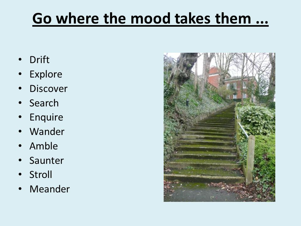 Go where the mood takes them... Drift Explore Discover Search Enquire Wander Amble Saunter Stroll Meander