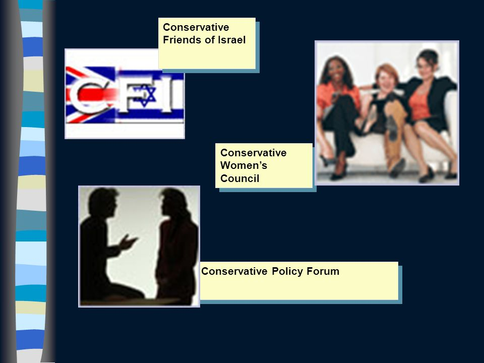 (e) Party Groups Association of Conservative Clubs Society of Conservative Lawyers Conservative Rural Action Group Conservative Disability Group