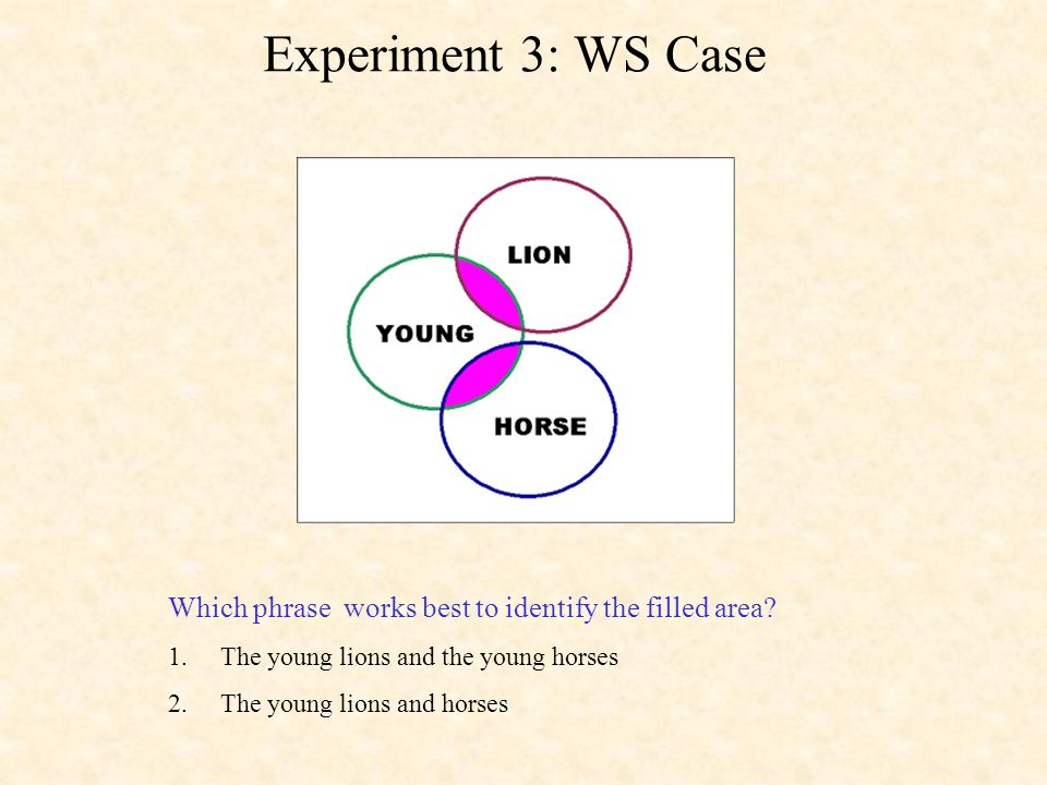 Experiment 3: WS Case Which phrase works best to identify the filled area.