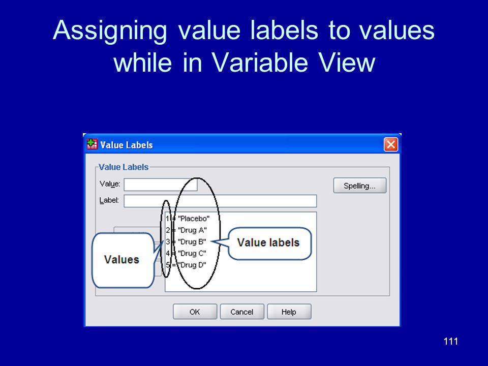 111 Assigning value labels to values while in Variable View