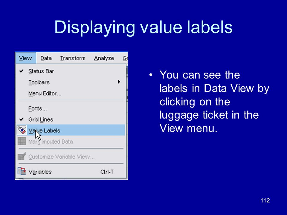 112 Displaying value labels You can see the labels in Data View by clicking on the luggage ticket in the View menu.